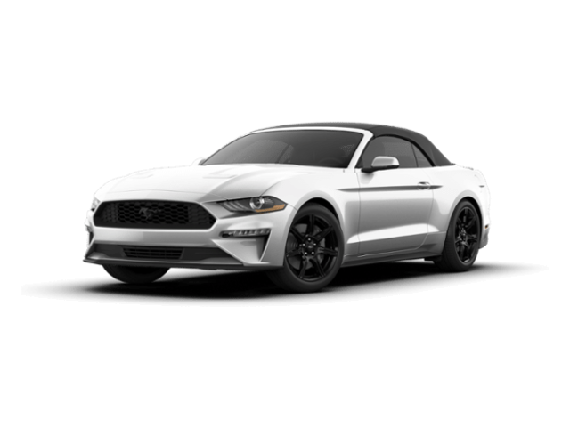 2019 Ford Mustang EcoBoost Premium Convertible For Sale in Clinton Township